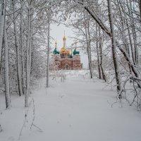 Снег идет... :: Виктор