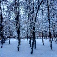Зима теперь) :: Nadezhda Ulitina