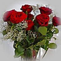 О розах сложены сонеты.... :: Galina Dzubina