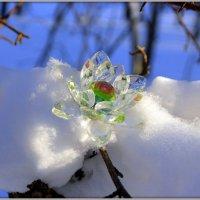 Звезда упала... :: Андрей Заломленков