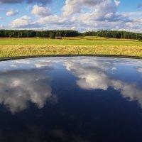 Летнее отражение :: Waldemar .
