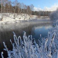 Пришла зима :: Мария Кухта
