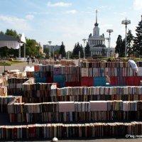 книги вместо кирпичиков :: Олег Лукьянов