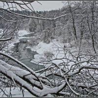 зимняя зарисовка :: Дмитрий Анцыферов