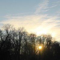 Спасибо солнышку за солнечный мольберт.... :: Tatiana Markova