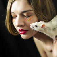крыс :: Ханна Бессмертная
