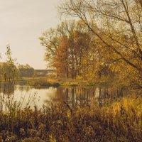 Вечер у реки Тильза :: Игорь Вишняков