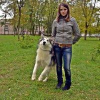 Мы с приятелем вдвоём... :: Владимир Болдырев