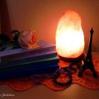 Свет дарит вдохновение :: Nina Yudicheva