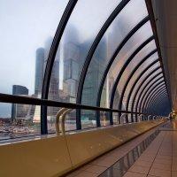 Сити в тумане :: Юрий Кольцов