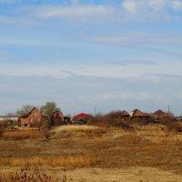 Сельский пейзаж в ноябре... :: Тамара (st.tamara)