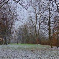 Последние аккорды ноября. :: Galina Dzubina