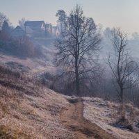 раннее морозное утро :: Мария Корнилова