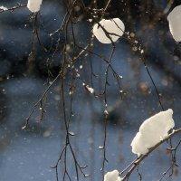 ОсыпАлся  снег.... :: Валерия  Полещикова