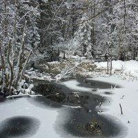 И падал снег..... :: Павлова Татьяна Павлова
