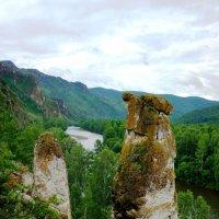 Каменные грибы :: Ольга Чистякова