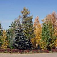 Золота осень :: раиса Орловская