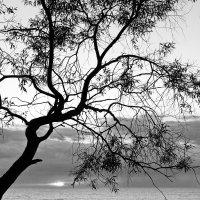 Осень :: Виктор Истомин