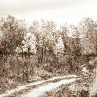 Осенняя дорога :: Виктор Мальгин