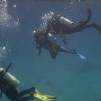Подводная прогулка :: sorovey Sol