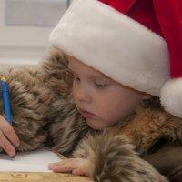 Письмо Деду Морозу,,, :: ФотоЛюбка *