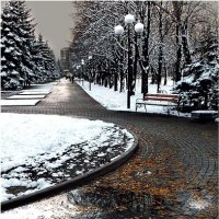 Первый снег :: Виталий
