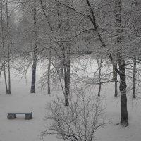 Вот и к нам пришла зима... :: BoxerMak Mak
