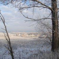 зима на подходе... :: Галина Филоросс