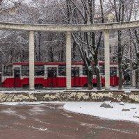 Трамвай :: Elena Ignatova