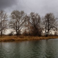 Хмурая осень. :: Виктор Гришенков