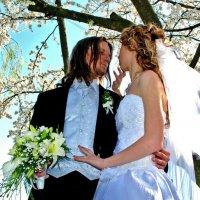 Свадьба :: Виктор Орлов