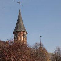 Кафедральный собор :: Светлана