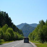 по дороге к Телецкому озеру :: Tatiana Lesnykh Лесных