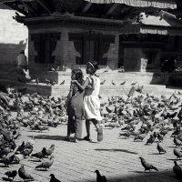 Про дружбу голубей... :: Юрий Клёнов