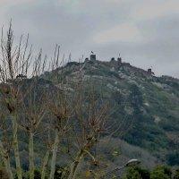 Замок мавров Синтра Португалия. :: Murat Bukaev
