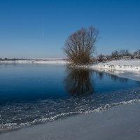 Замёрзший пруд :: Вера