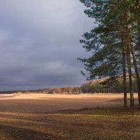 Дубковский пляж :: Виталий