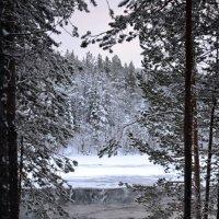Зимние картинки :: Ольга