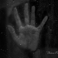 Сквозь стекло... :: Антон Понкратов