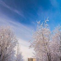 Утро на озере :: Oxana Kilina