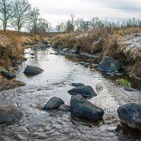 Поиск новых мест для фотосессий на природе :: Павел Москалёв