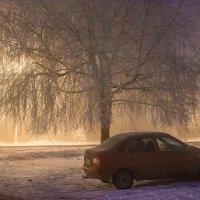 туман :: Александр Тулупов