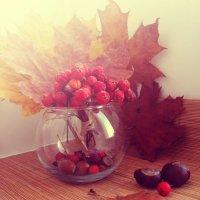 Осень :: Ирина Мищенко