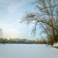 Зимняя протока :: юрий Амосов