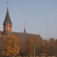Осень в Калининграде :: Светлана