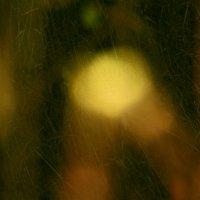 Травы.Осень.Абстракция. :: Валерия  Полещикова