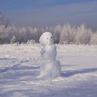 Вот она,настоящая Снегурочка! :: Наталия Григорьева