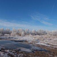 ПозднеОсеннее....или Первый лед. :: Анатолий __