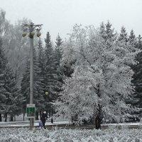 Зима городская :: Виктор Четошников