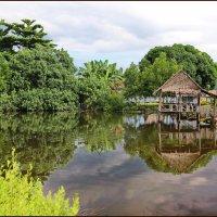 В деревушке Беама :: Михаил Бобков